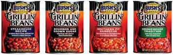 Bush's Best Group of 4 Grillin' Beans