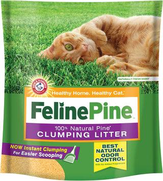 Arm & Hammer Feline Pine Clumping Cat Litter