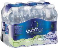 Evamor Natural Artesian Water