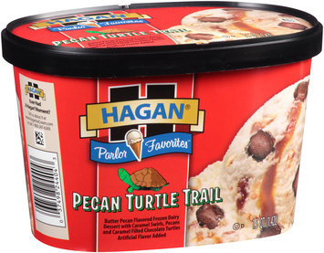 Hagan® Parlor Favorites™ Pecan Turtle Trail Ice Cream 1.5 qt. Carton