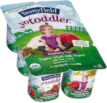 Stonyfield Organic™ YoToddler® Raspberry Pear Yogurt 6-4 oz. Cups