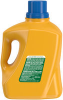ARM & HAMMER™ Clean Scentsations™ Twilight Sky™ Laundry Detergent