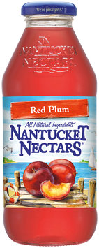 Nantucket Nectars® Red Plum 16 fl. oz. Glass Bottle