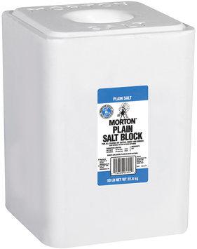 Morton Plain Salt Block 50 Lb