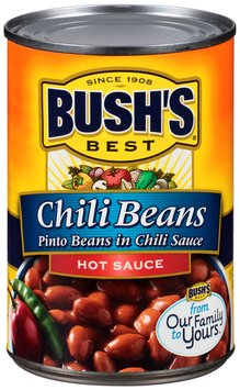 Bush's Best® Pinto Beans in Chili Sauce Mild Chili Beans 16 oz. Can