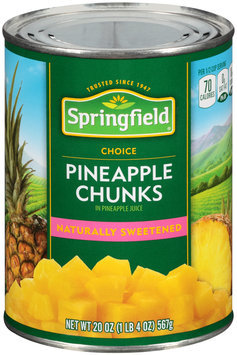 Springfield® Pineapple Chunks in Pineapple Juice 20 oz. Can