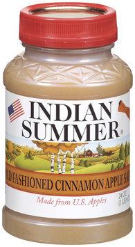 Indian Summer Old Fashioned Cinnamon Apple Sauce 24 Oz Plastic Jar