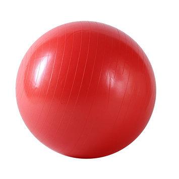 Sunny Health & Fitness Anti-Burst Gym Ball-55cm