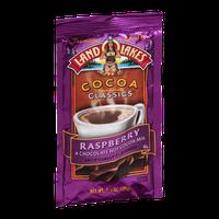 Land O'Lakes Cocoa Classics Hot Cocoa Mix Raspberry & Chocolate