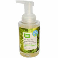CleanWell All-Natural Antibacterial Foaming Hand Wash Spearmint Lime 9.5 fl oz