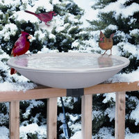 Allied Precision 20 in. EZ Deck Tilt and Clean - Heated