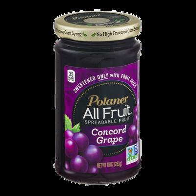 Polaner All Fruit Spreadable Fruit Concord Grape