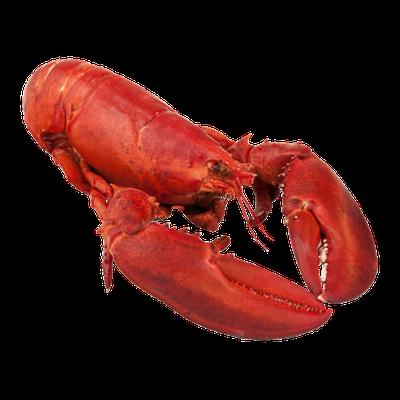 USDA Chicken Lobster Cooked