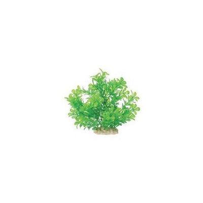 Pure Aquatic Natural Elements Moneywort Aquarium Ornament in Green