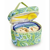 Picnic Plus Insulated Ice Cream Carrier