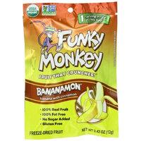 Funky Monkey Snacks Bananamon, 0.42-Ounce Bags (Pack of 12)