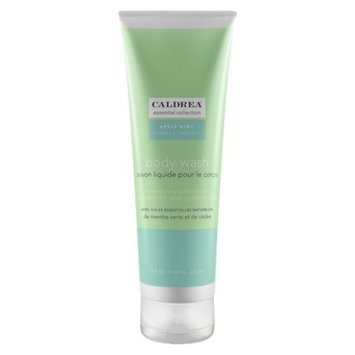 Caldrea Essentials Collection Apple Mint Body Wash - 8 oz