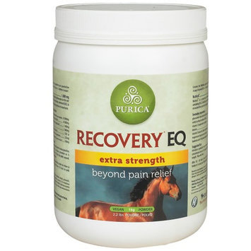 Recovery EQ Extra Strength with HA