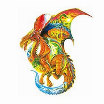 SunsOut Dragon Dreams 1000 Piece Shaped Puzzle Ages 12+