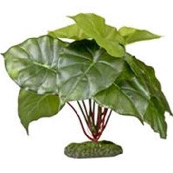 Blue Ribbon Pet Products ColorBurst Florals Alocasia Green Leaf Aquari
