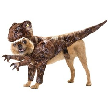 Buyseasons Raptor Pet Costume - Small