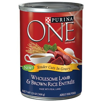 PURINA ONE® SmartBlend Wholesome Lamb & Brown Rice Entree