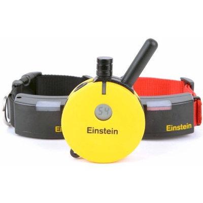 E-collar Technologies Einstein Two Dog 1/2 Mile Remote Training System Collar