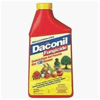 Gulfstream Home & Garden Inc Gulf Stream Home & Garden Daconil Fungicide Concentrate Pint - 2105