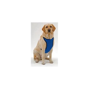 Kumfy Tailz Small Pet Animals Safe Protective Adjustable Neck Mesh Harness Medium Royal Blue
