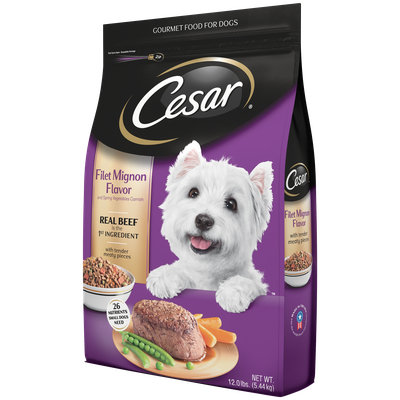 CESAR® Dry Filet Mignon Flavor with Spring Vegetables - Dry Dog Food