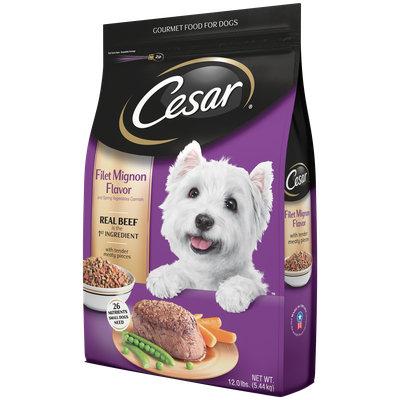 CESAR® Dry Filet Mignon Flavor with Spring Vegetables - Dry Dog Food