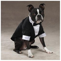 East Side Collection Yappily Ever After Groom Dog Tuxedo