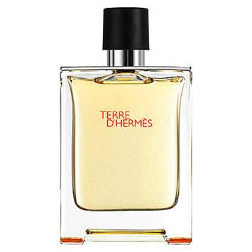 Hermes Terre D'hermes Men's Eau De Toilette Spray