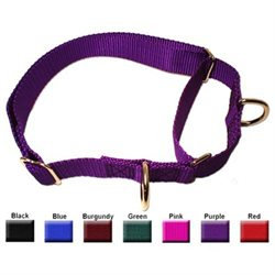 Majesticpet Majestic Pet Nylon Martingale Dog Training Collar - Black Large