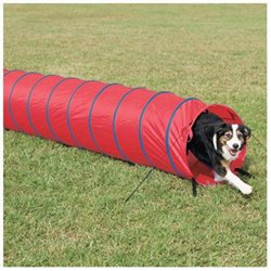 PetSafe PetSafe 10' Open Tunnel PDT00-11030