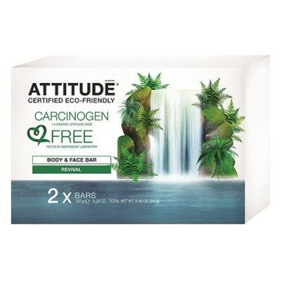 Attitude Body & Face Bar