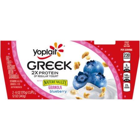 Yoplait® Greek Blueberry Fat Free Yogurt With Granola