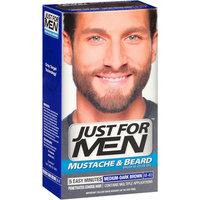 Just For Men Mustache & Beard Brush-In Color Gel