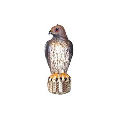 Bird-b-gone Decoy Hawk MMRTH1 by Bird B Gone