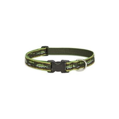 Lupine Brook Trout Adjustable Collar