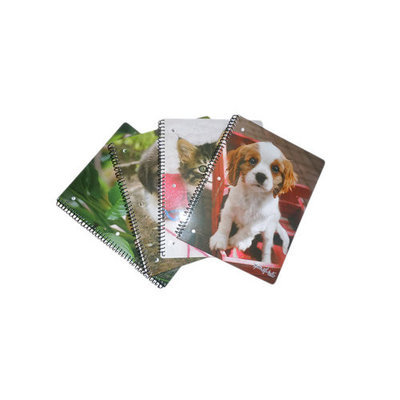 Generic Dogs and Cats Notebook