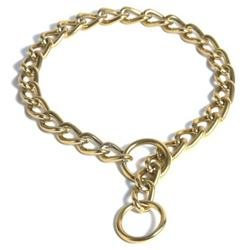 Platinum Pets Steel Coated Dog Collar in Gold