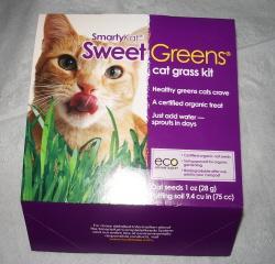 SmartyKat Sweet Greens Cat Grass Kit
