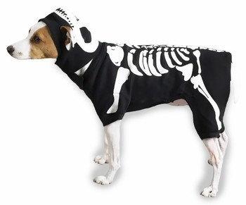 Casual Canine Glow Bones Dog Costume XS