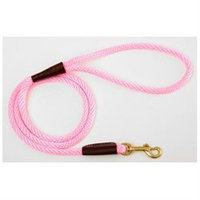 Mendota Small Snap Leash in Hot Pink