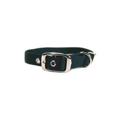 Hamilton Pet Products Single Thick Nylon Dog Collar in Hunter Green