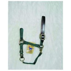 Hamilton Halter Company - Adjustable Halter With Leather Headpole- Hunter Green Average - 1DALSS AVDG
