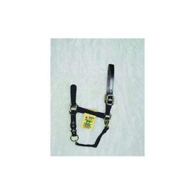 Hamilton Halter Company - Adjustable Halter With Leather Headpole- Black Yearling - 1DALSS YRBK