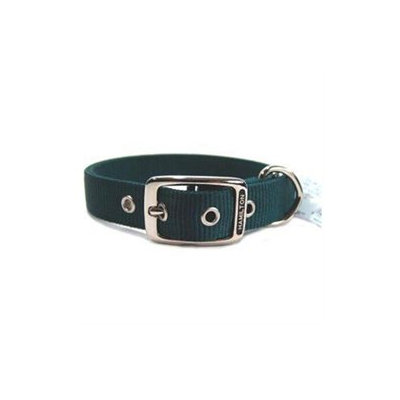 Hamilton Pet Products Double Thick Nylon Deluxe Dog Collar in Hunter Green