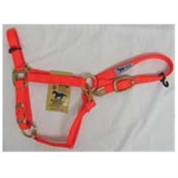Hamilton Halter Company - Adjustable Chin Halter With Snap- Orange Average - 1DAS AVOR